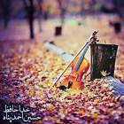 خداحافظ - حسین احمد پناه
