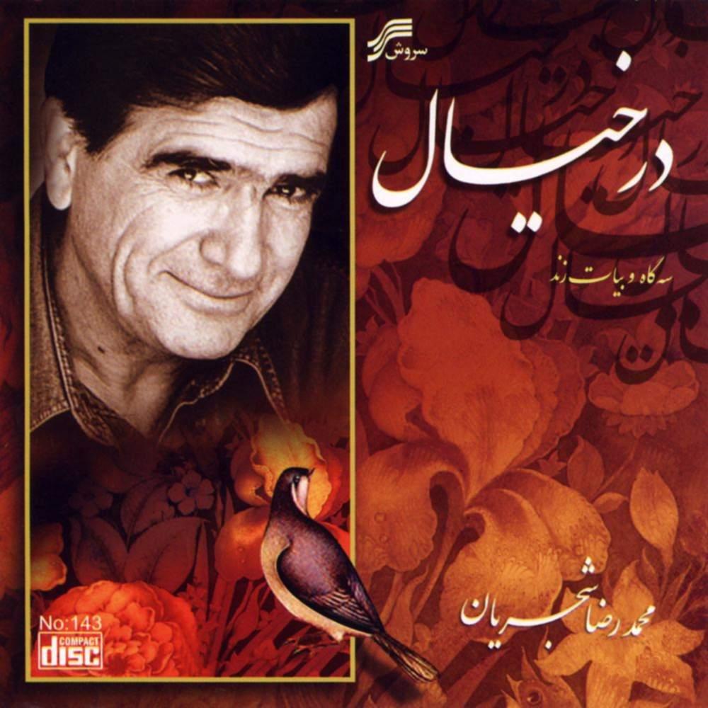 در خیال - محمدرضا شجریان
