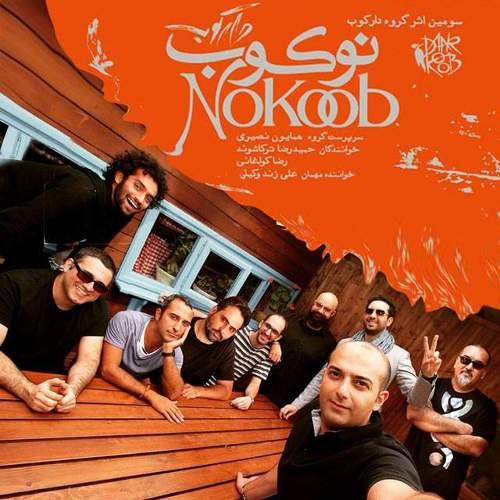 نوکوب - گروه دارکوب