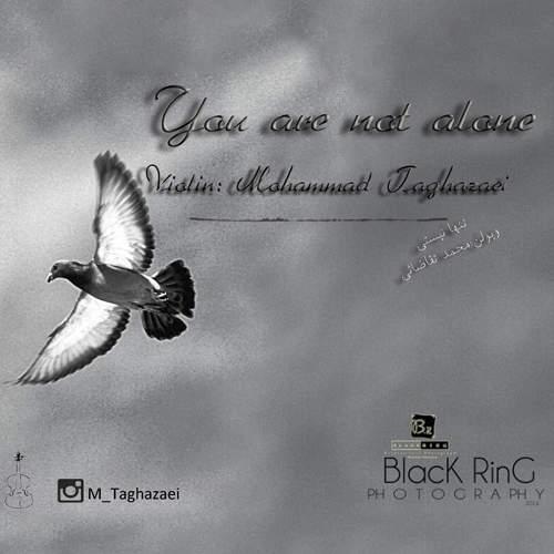 تنها نیستی - محمد تقاضایی
