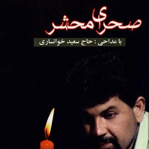 صحرای محشر - محمود محمودی خوانساری
