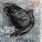 تندیسی از سراب - گروه دارکوب