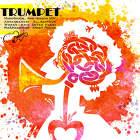 Trumpet - امیر حسین نبوی