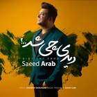 دیدی چی شد - سعید عرب