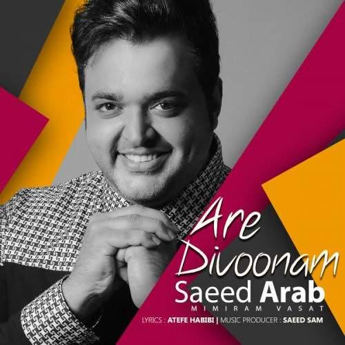 آره دیوونم - سعید عرب