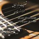 بزم خیال - محسن غلامی