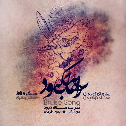 ترانه های کبود - عماد توحیدی, و ,حسین  نظری