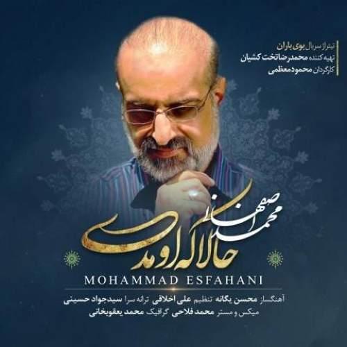 حالا که اومدی - محمد اصفهانی