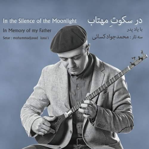 در سکوت مهتاب - محمدجواد کسائی