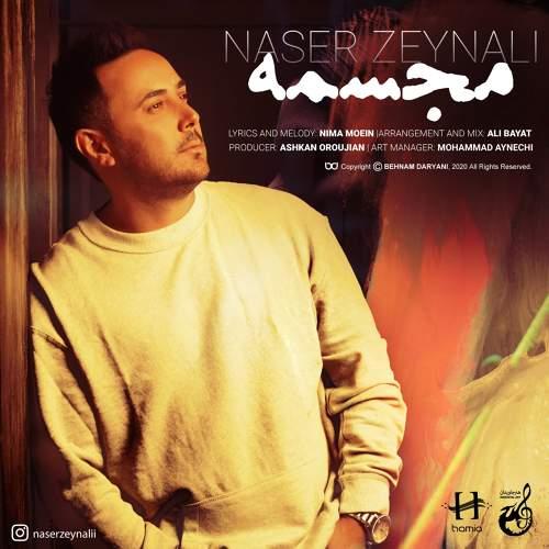 مجسمه - ناصر زینلی