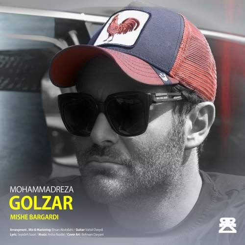 میشه برگردی - محمدرضا گلزار