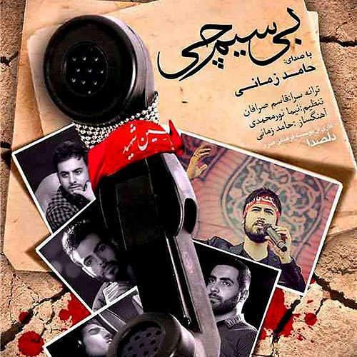حامد زمانب