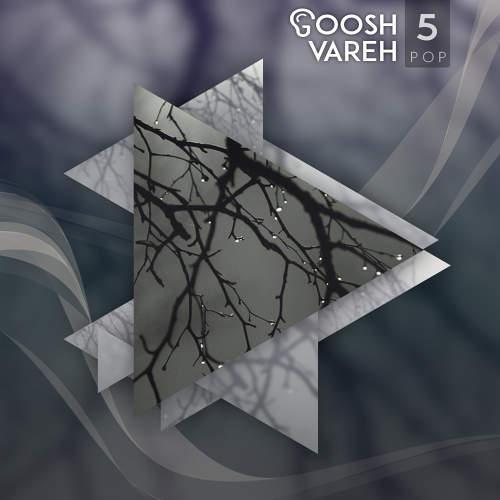 گوشواره 5