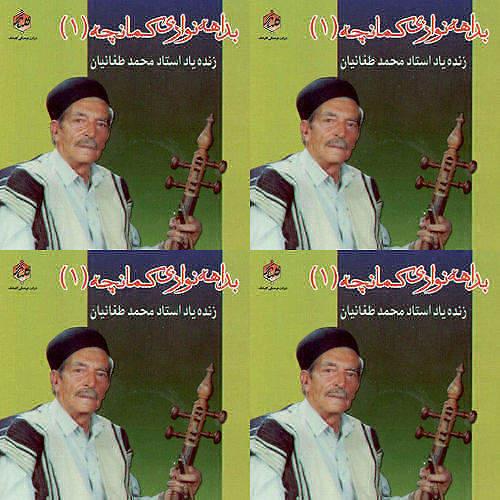 استاد طغانیان